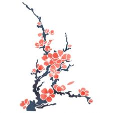 Обои Сакура дерево цветы  раздел Цветы размер
